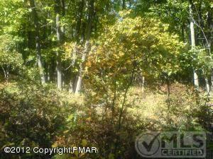 $16,900 Lot/land for sale in Albrightsville, PA 16,900 USD