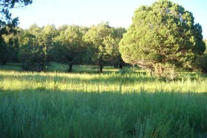 $495,000 Mayhill Real Estate Land for Sale. $495,000 - PRIDEMORE, SKIP of