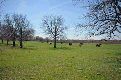 $500,000 Incredible 25 acres with fenced pastures and 2 ponds. 30x50 Barn with electric &