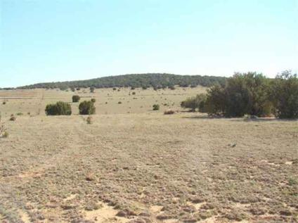 $85,800 This picturesque Estancia Valley property boasts over 54 spectacular acres for